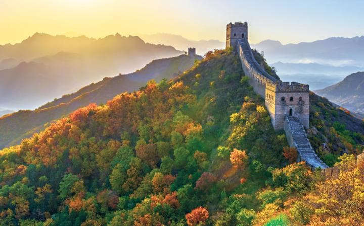 טיול בסין עולם הספארי