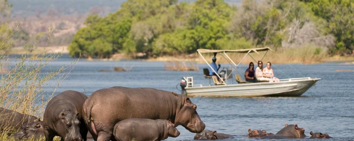 ספארי שני הנהרות זמביה עולם הספארי