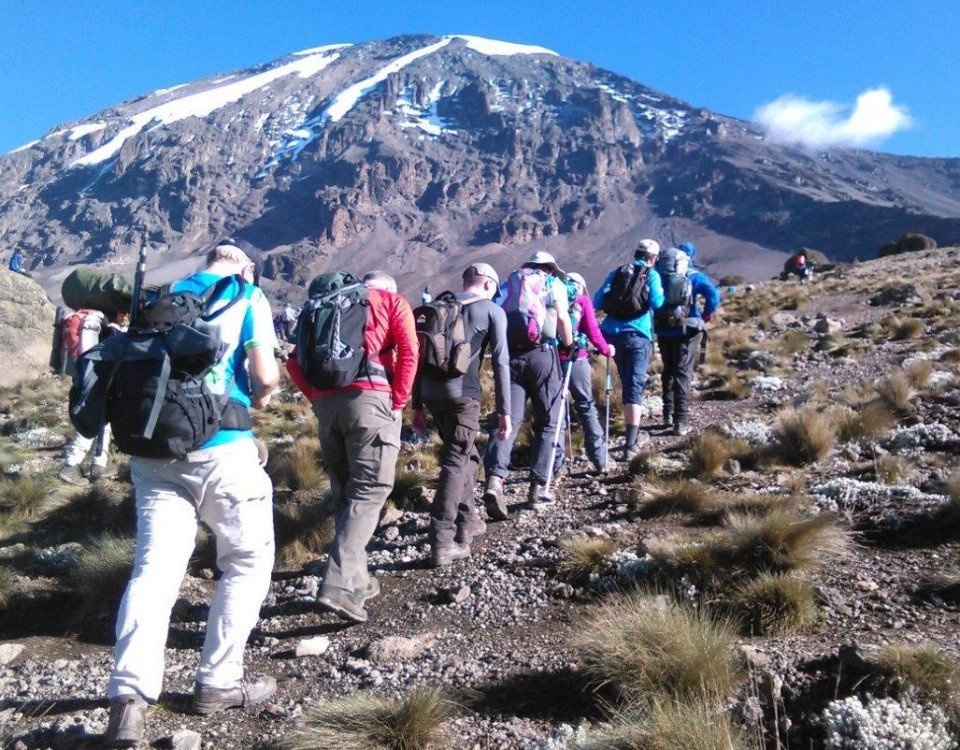 kilimanjaro-trip-lemosho-route-7-days